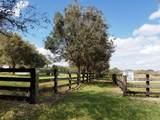 25701 Brians Trail - Photo 8