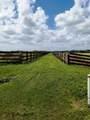 25701 Brians Trail - Photo 9