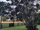 13840 Greentree Trail - Photo 37