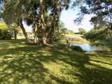 11850 Twin Creeks Drive - Photo 12
