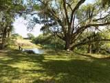 11850 Twin Creeks Drive - Photo 13