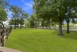 14575 Draft Horse Lane - Photo 46