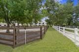 14575 Draft Horse Lane - Photo 47