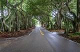 3734 Bent Banyan Way - Photo 40