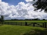 3303 Hunter Drive - Photo 8
