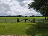 3303 Hunter Drive - Photo 9