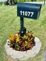 11077 Sacco Drive - Photo 2