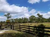 1807 Hunter Drive - Photo 9