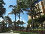 3594 Ocean Boulevard - Photo 5