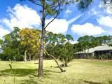 7261 Mandarin Boulevard - Photo 60