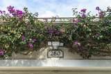 260 Swallowtail Lane - Photo 6