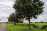 3303 Hunter Drive - Photo 21