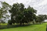 3303 Hunter Drive - Photo 22