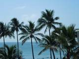 340 Ocean Boulevard - Photo 5
