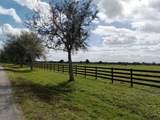 25952 Jockeys Run - Photo 2