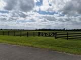 25952 Jockeys Run - Photo 3