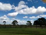25952 Jockeys Run - Photo 8