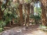26006 Hannahs Path - Photo 14