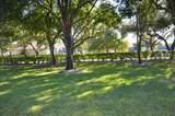 1668 Wood Fern Drive - Photo 25