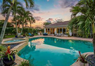 317 Eagle Drive, Jupiter, FL 33477 (#RX-10333848) :: Amanda Howard Real Estate