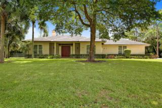 15216 N 81st Terrace, Palm Beach Gardens, FL 33418 (#RX-10336572) :: Amanda Howard Real Estate
