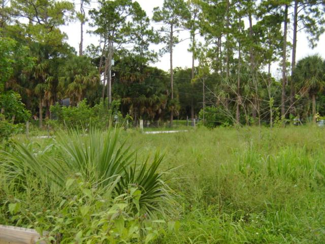 Xxx 62 Road N, Loxahatchee, FL 33470 (#RX-10346305) :: Ryan Jennings Group