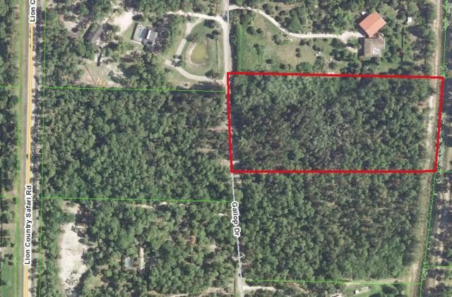 Xxxx Gallop Drive, Loxahatchee, FL 33470 (#RX-10346348) :: Ryan Jennings Group