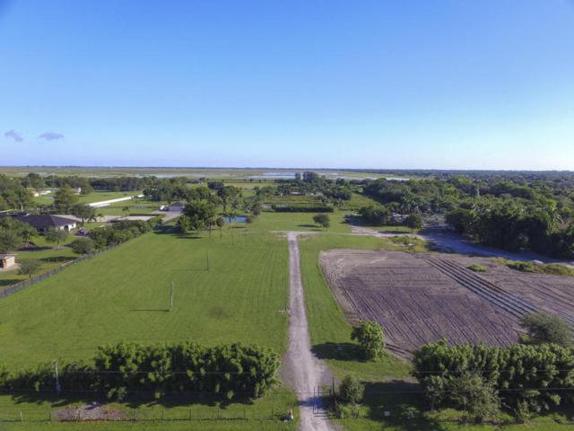 16219 West Hollow Tree Lane, Wellington, FL 33470 (#RX-10359528) :: Ryan Jennings Group
