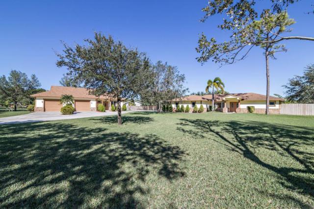 8256 Needles Drive, Palm Beach Gardens, FL 33418 (#RX-10389868) :: Ryan Jennings Group