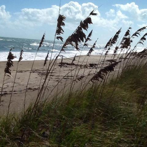 1606 Surfside Drive, Hutchinson Island, FL 34949 (#RX-10392496) :: The Reynolds Team/Treasure Coast Sotheby's International Realty