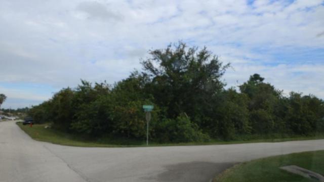 101 SW Saratoga Avenue, Port Saint Lucie, FL 34953 (#RX-10407143) :: The Carl Rizzuto Sales Team