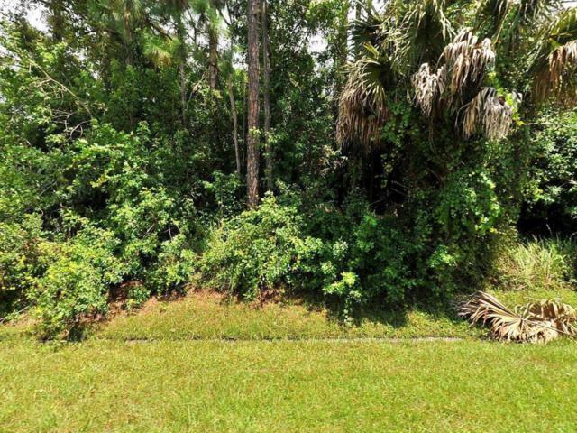 1198 SW Bianca Avenue, Port Saint Lucie, FL 34953 (#RX-10414968) :: The Carl Rizzuto Sales Team