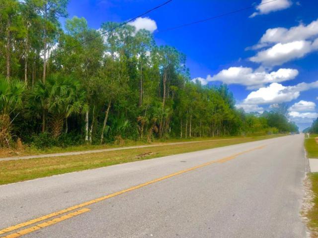 Xx Tangerine Boulevard, West Palm Beach, FL 33412 (#RX-10424164) :: Ryan Jennings Group