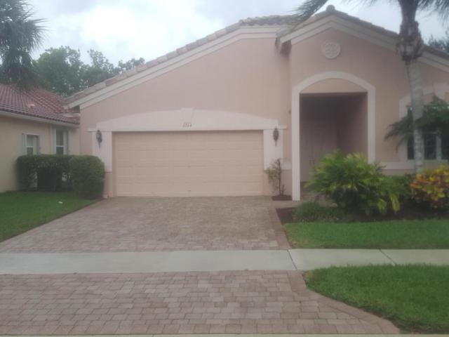 6564 Turchino Drive, Lake Worth, FL 33467 (#RX-10436093) :: Ryan Jennings Group