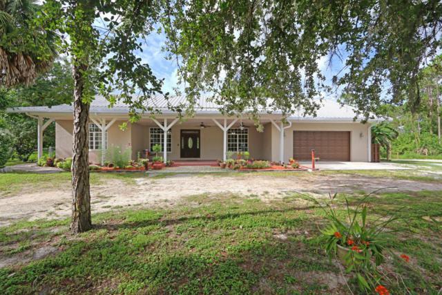 16402 91st Place N, Loxahatchee, FL 33470 (#RX-10440567) :: The Carl Rizzuto Sales Team