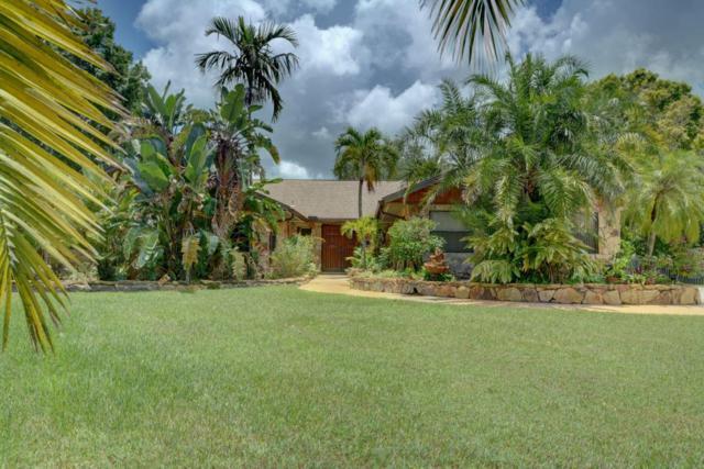 346 NE Ficus Terrace, Jensen Beach, FL 34957 (#RX-10443920) :: The Haigh Group | Keller Williams Realty