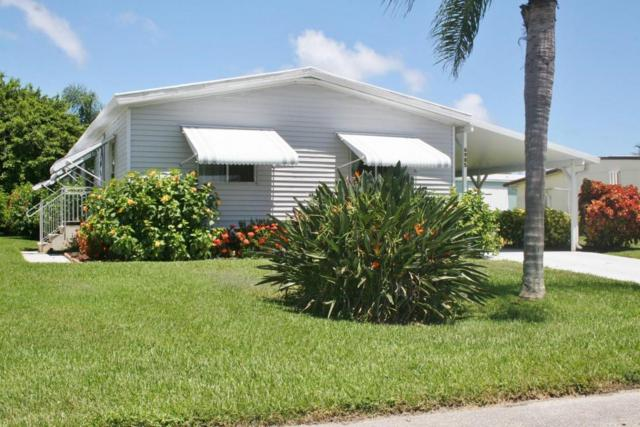 6985 SE Amendment Street, Hobe Sound, FL 33455 (#RX-10453961) :: The Carl Rizzuto Sales Team