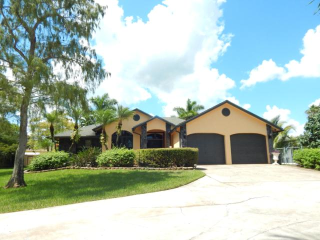 15389 69th Trail N, Palm Beach Gardens, FL 33418 (#RX-10465188) :: United Realty Consultants, Inc