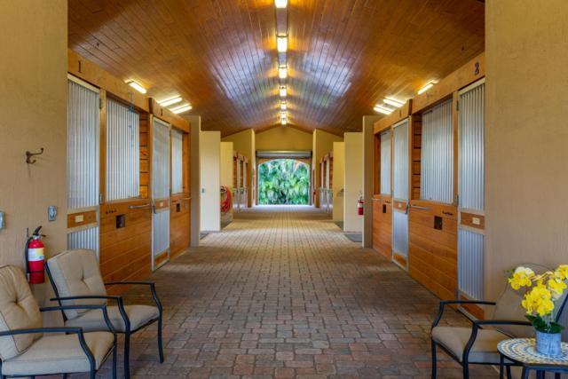 625 Cindy Circle Lane, Wellington, FL 33414 (#RX-10465304) :: United Realty Consultants, Inc
