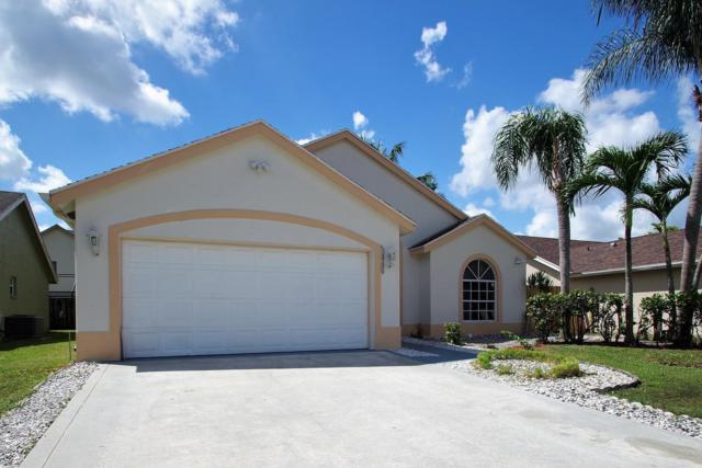 12781 Meadowbreeze Drive, Wellington, FL 33414 (#RX-10469392) :: Ryan Jennings Group