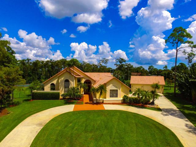 14335 Halter Road, Wellington, FL 33414 (#RX-10472002) :: Weichert, Realtors® - True Quality Service
