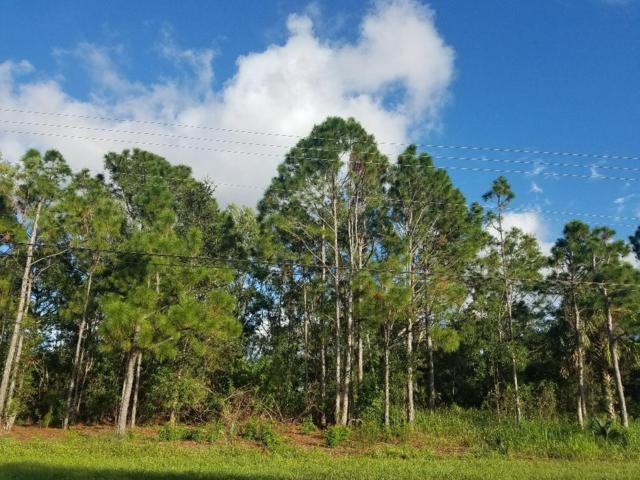 476 SW Tulip Boulevard, Port Saint Lucie, FL 34953 (#RX-10481437) :: Atlantic Shores