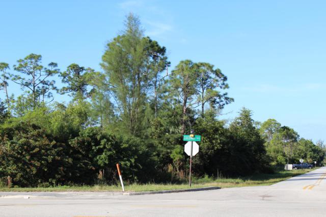 12523 Hamlin Boulevard, Royal Palm Beach, FL 33412 (#RX-10482221) :: Ryan Jennings Group
