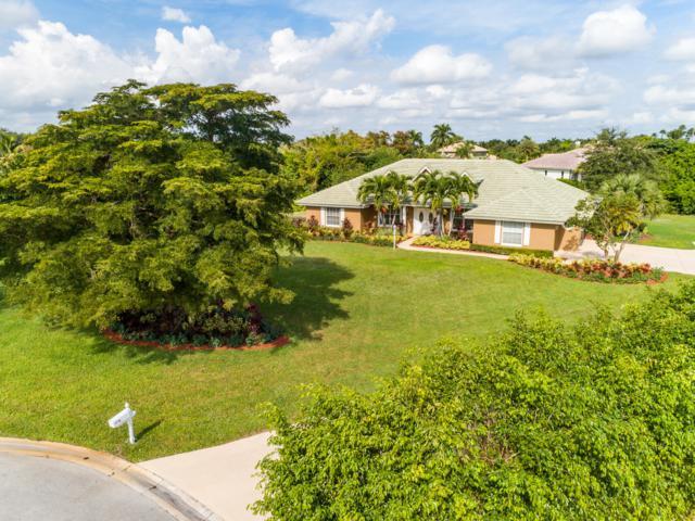 15355 Emmelman Road, Wellington, FL 33414 (#RX-10482677) :: Ryan Jennings Group