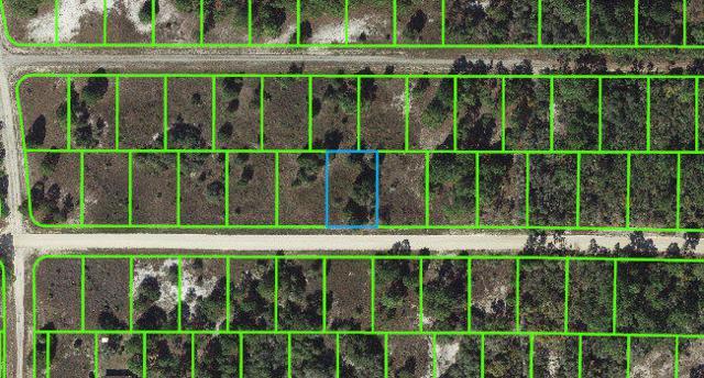 324 Blue Moon Avenue, Lake Placid, FL 33852 (#RX-10485790) :: Weichert, Realtors® - True Quality Service