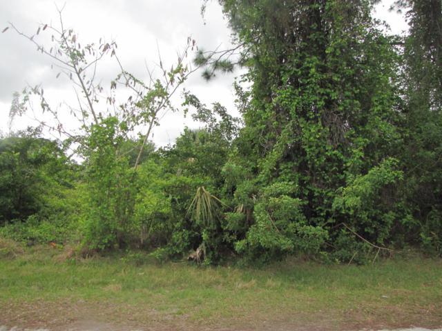 260 Foley Street SE, Palm Bay, FL 32909 (#RX-10486968) :: Ryan Jennings Group