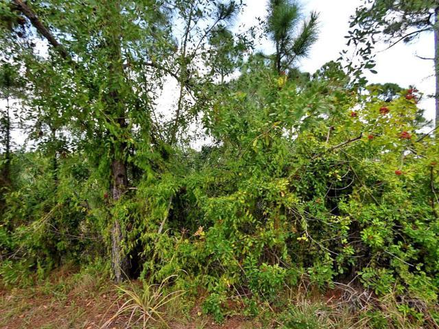 Tbd Forgotten Lane, Port Saint Lucie, FL 34952 (#RX-10487041) :: Ryan Jennings Group