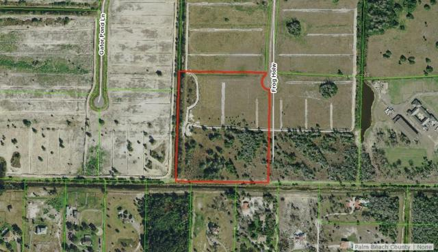 3113 Frog Hollow, Loxahatchee, FL 33470 (#RX-10493568) :: The Rizzuto Woodman Team