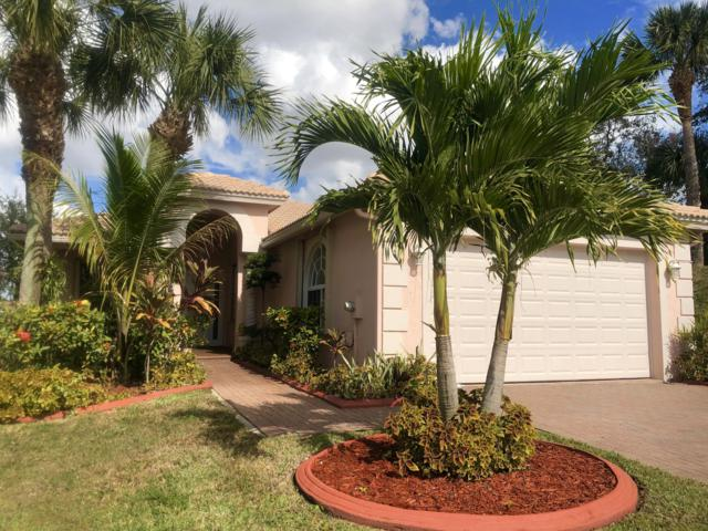 165 Bellezza Terrace, Royal Palm Beach, FL 33411 (#RX-10496955) :: Blue to Green Realty