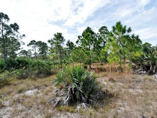 Tbd 0 Dyer Road, Fort Pierce, FL 34945 (#RX-10501510) :: Ryan Jennings Group